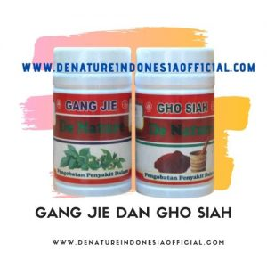 Gang Jie dan Gho Siah - De Nature Indonesia - Rahasia Herbal Indonesia - 085888818587 087787063999