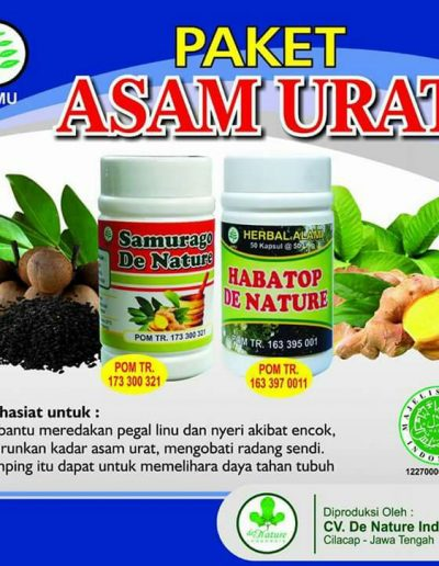Paket Obat Herbal Asam Urat - De Nature Indonesia - Rahasia Herbal Indonesia - 085888818587 087787063999