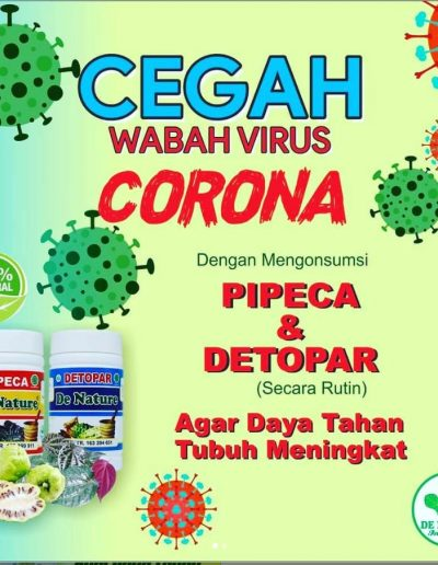 Corona Pipeca dan Detopar - De Nature Indonesia - Rahasia Herbal Indonesia - 085888818587 087787063999