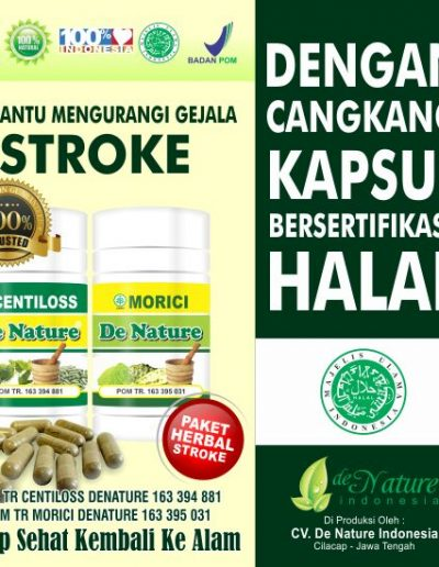 Paket Herbal Stroke - De Nature Indonesia 085888818587 0877870639